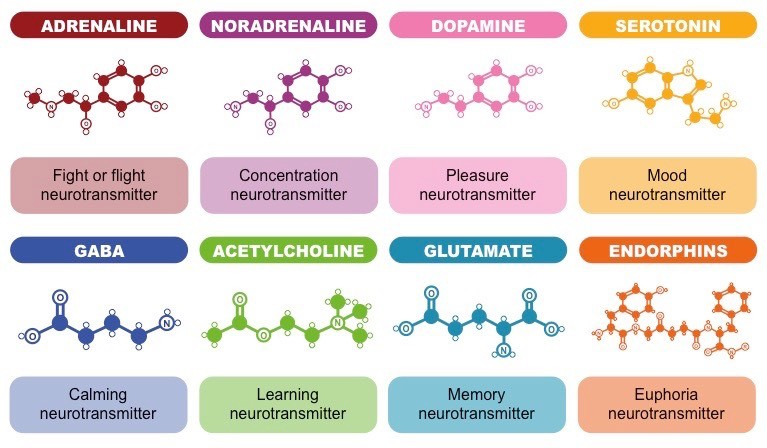 list some common neurotransmitters and describe their effect on behavior Because neurotransmitters can impact a specific area of the brain, including behavior or mood, their malfunctions can cause effects ranging from mood swings to aggression and anxiety many neurotransmitters exist in the brain, but those most studied in relation to mental disorders are dopamine, acetylcholine, gaba, noradrenaline (norepinephrine.