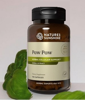 ABOUT PAW PAW