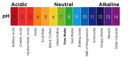 Forum on this topic: 7 Things The Color Of Your Pee , 7-things-the-color-of-your-pee/
