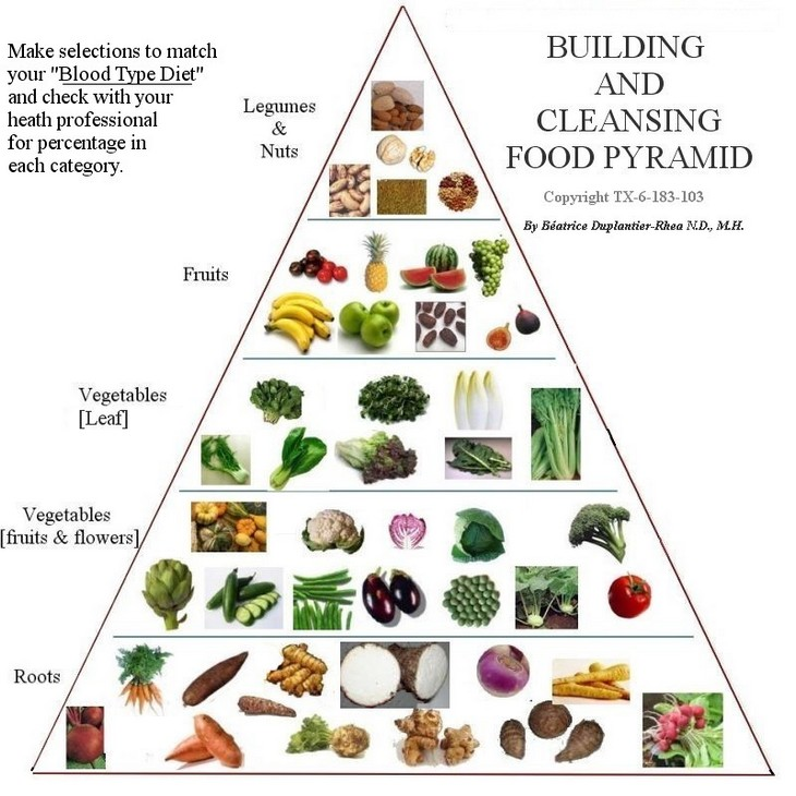 health articles on the food pyramid