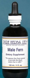Male fern  (4 oz.) -malefern